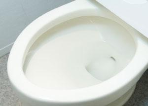 EG-プロテクト コート<トイレ>